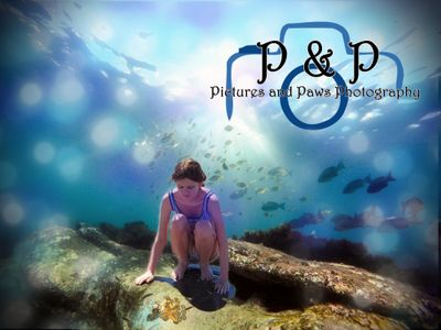 Avatar for P & P Photography Knoxville, TN Thumbtack