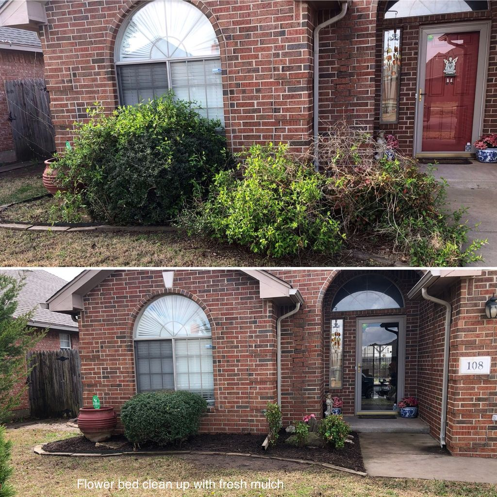 Yard cleanup and mulch installation