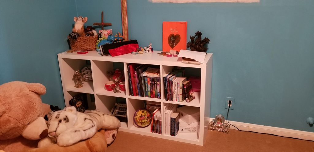 Single Mom Declutter & Organizing