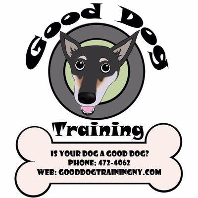 Avatar for Good Dog Training 🐶 Webster, NY Thumbtack