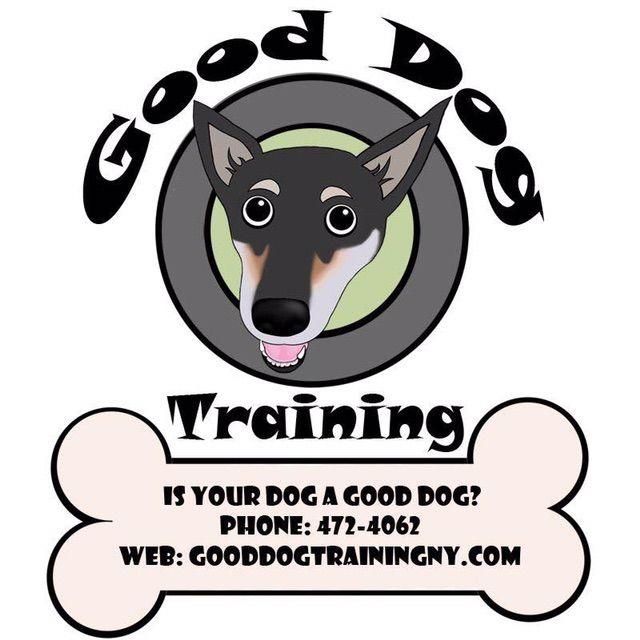 Good Dog Training 🐶