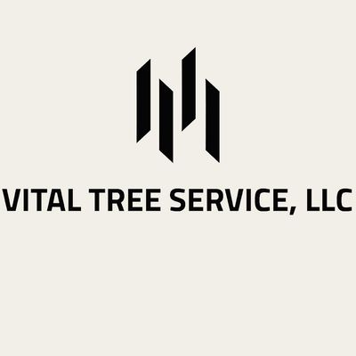 Avatar for Vital Tree Service LLC