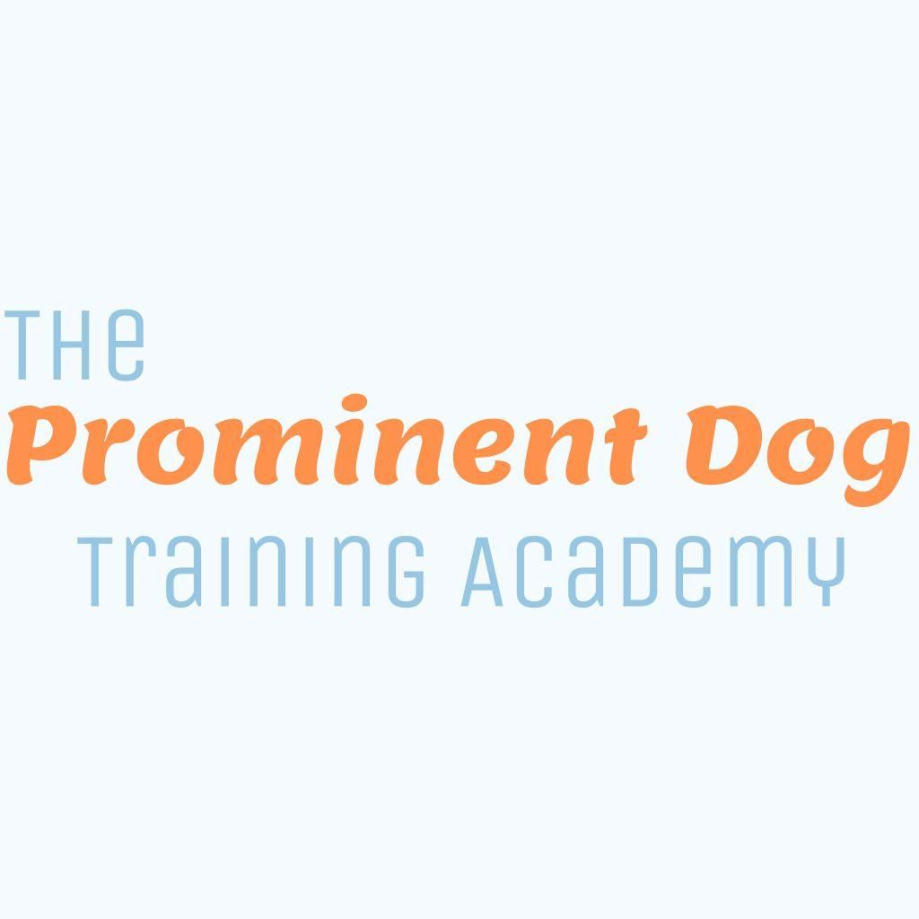 The Prominent Dog Training Academy