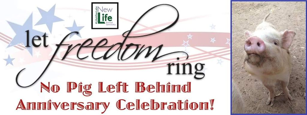 Let Freedom Ring Celebration 2019