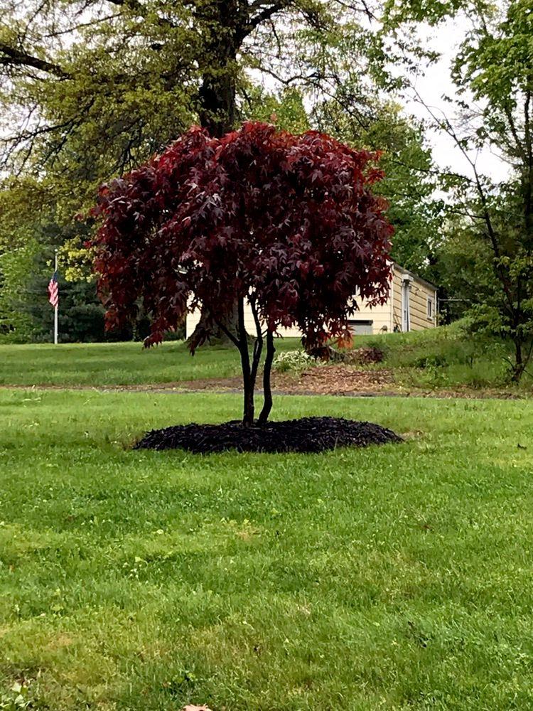 Edland landscaping LLC