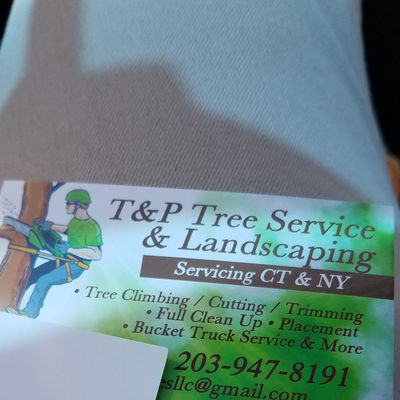 Avatar for T&P Tree services & Landscaping LLC