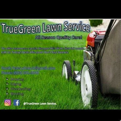 Avatar for True green lawn services