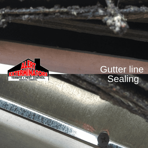 Before and After - Gutter line Sealing