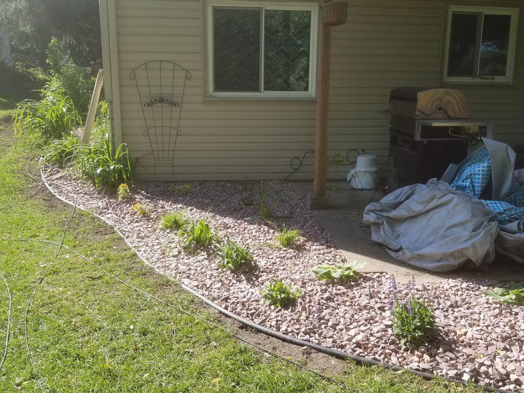 Yard Restoration
