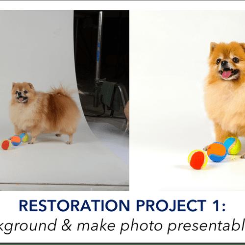 Restoration Project 1
