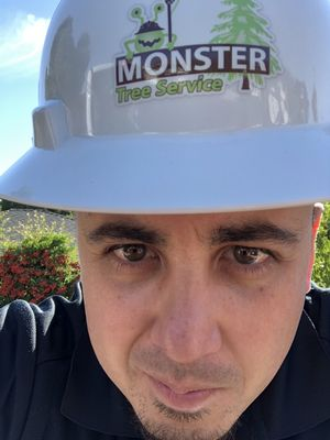 Avatar for Monster Tree Service of the Coast, Inc. San Mateo, CA Thumbtack