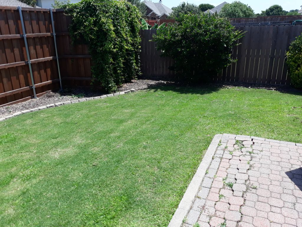 Basic Mow and Trim