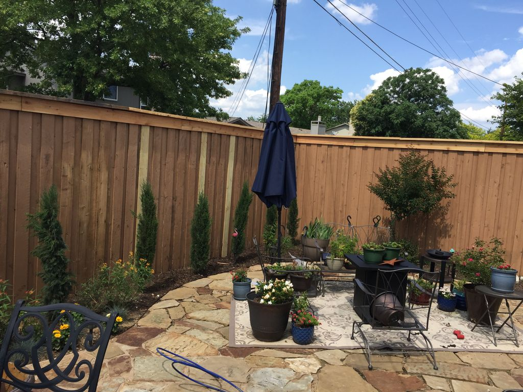 Clean and re-stain a fence