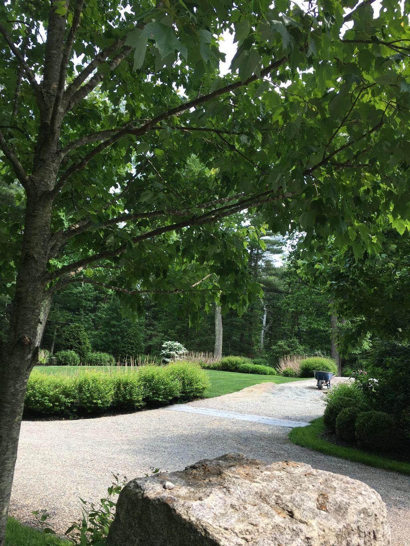 Full Service Lawn Care - Dedham 2019