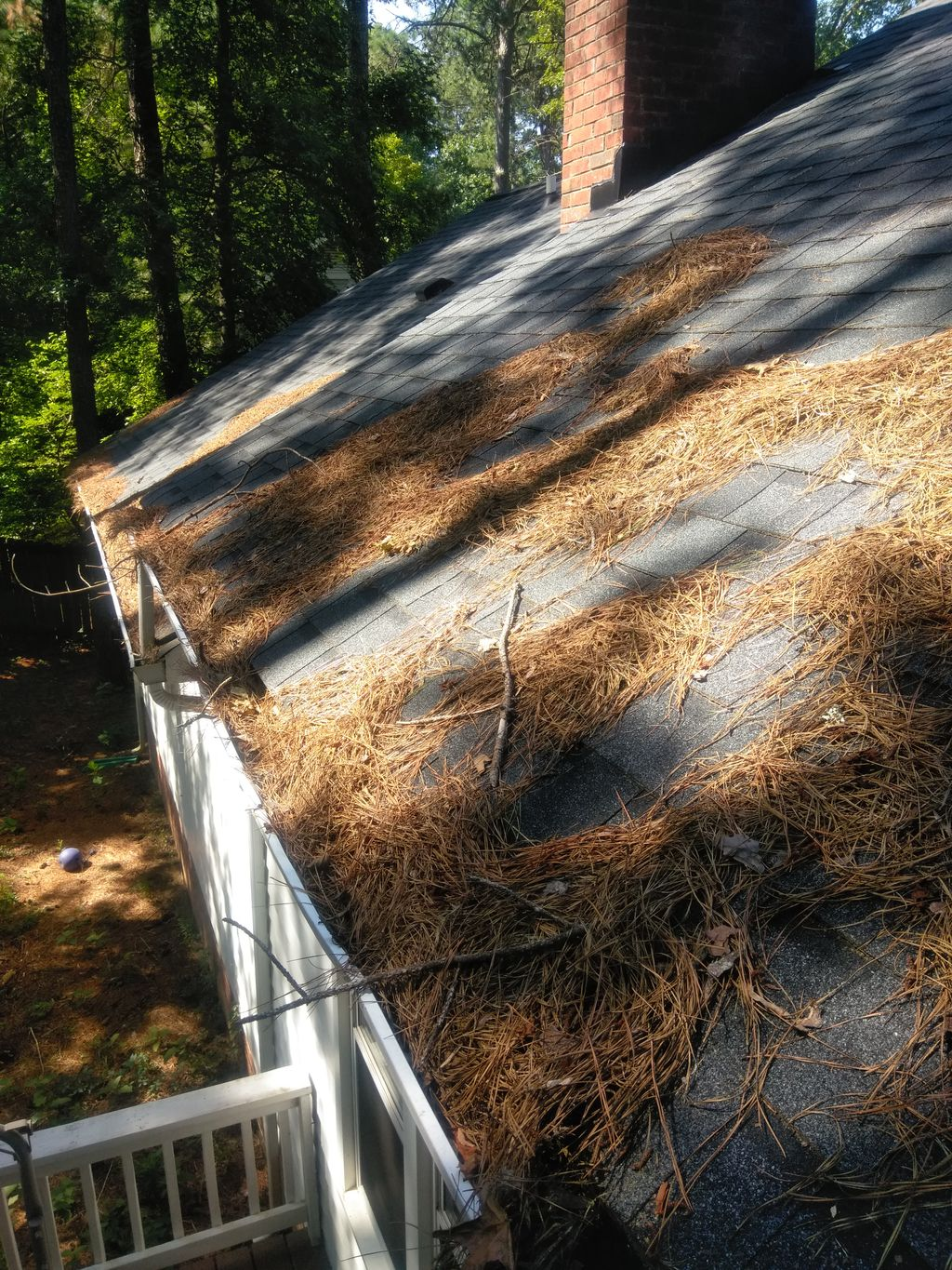 Roof fix and clean up