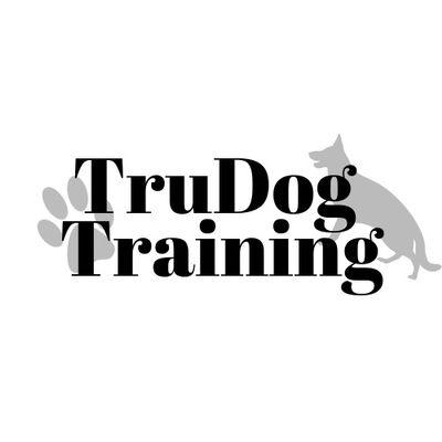 Avatar for TruDog Training Berthoud, CO Thumbtack