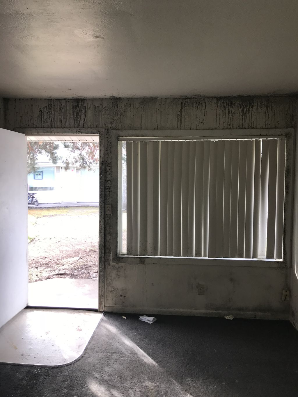 Apartment mold and restoration