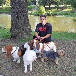 Double D Dog Training