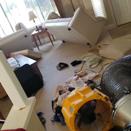 For an effective heat treatment its necessary to move furniture, clothing, etc
