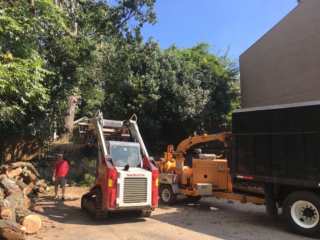 Tree Trimming and Removal - Atlanta 2017