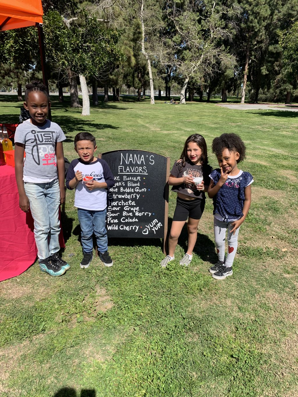 Private Birthday party in the park