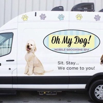 Avatar for Oh My Dog Mobile Grooming