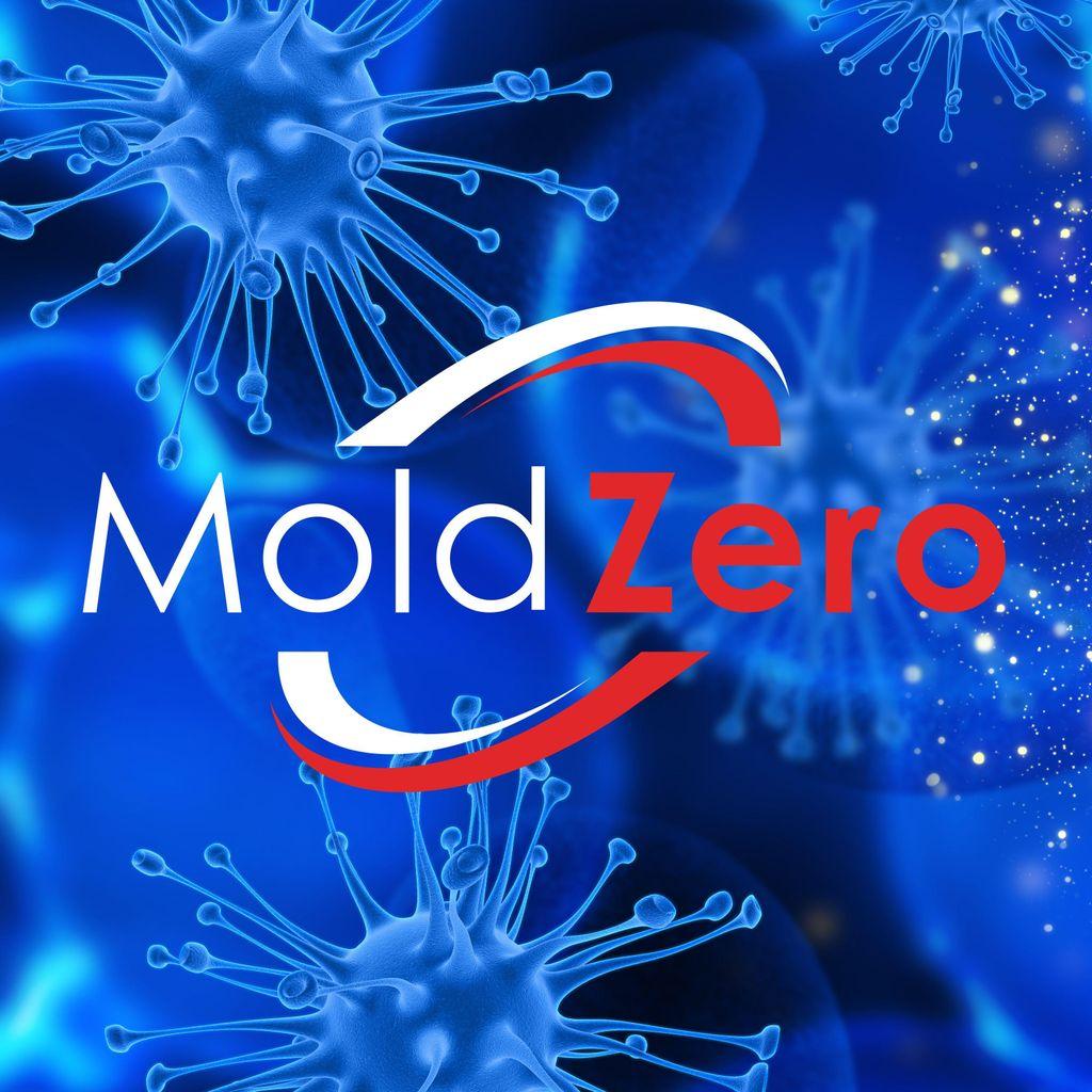 Mold Zero