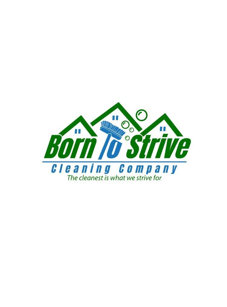 Born To Strive Cleaning Company