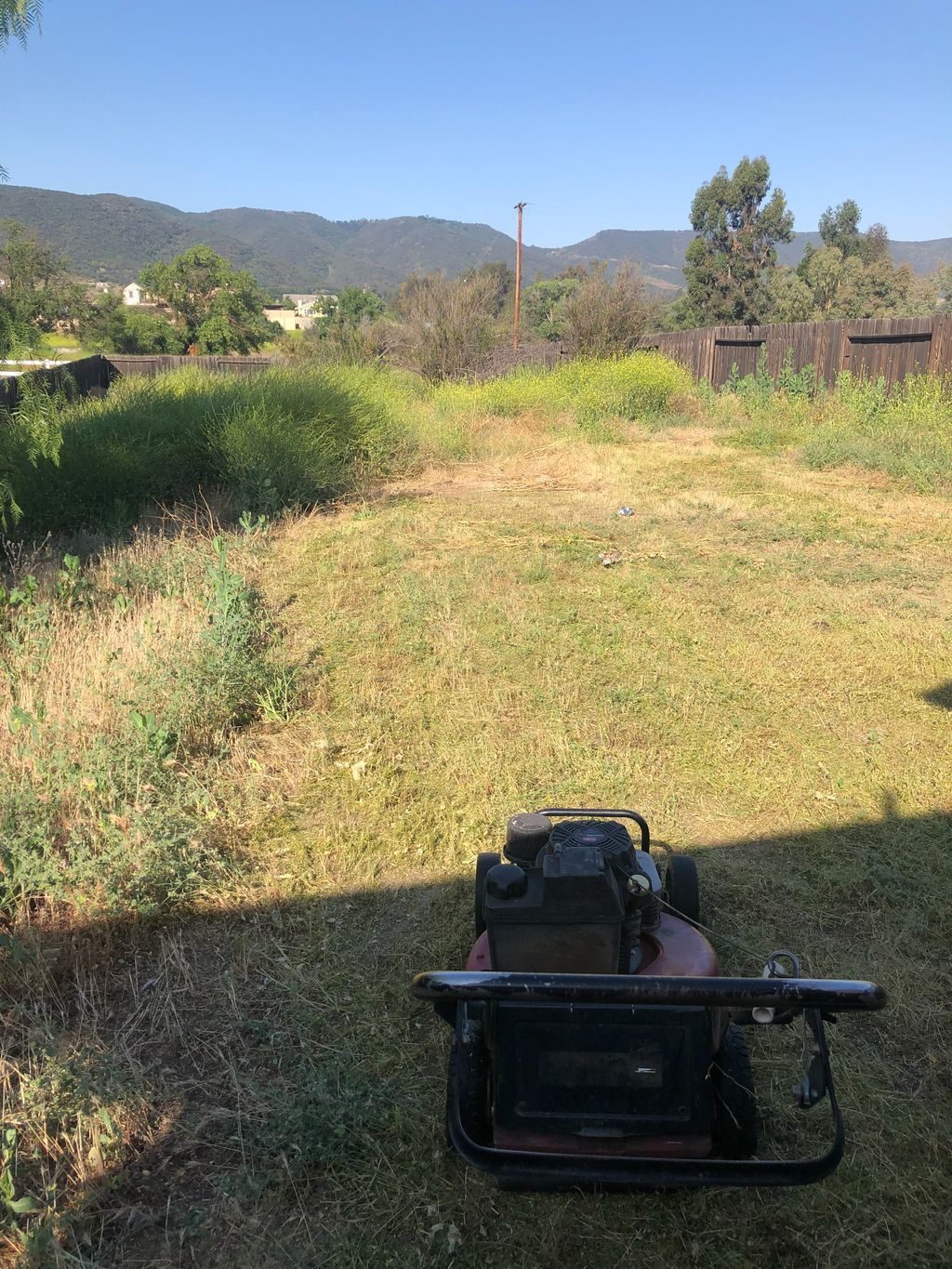 Weed whacking,weed abatement