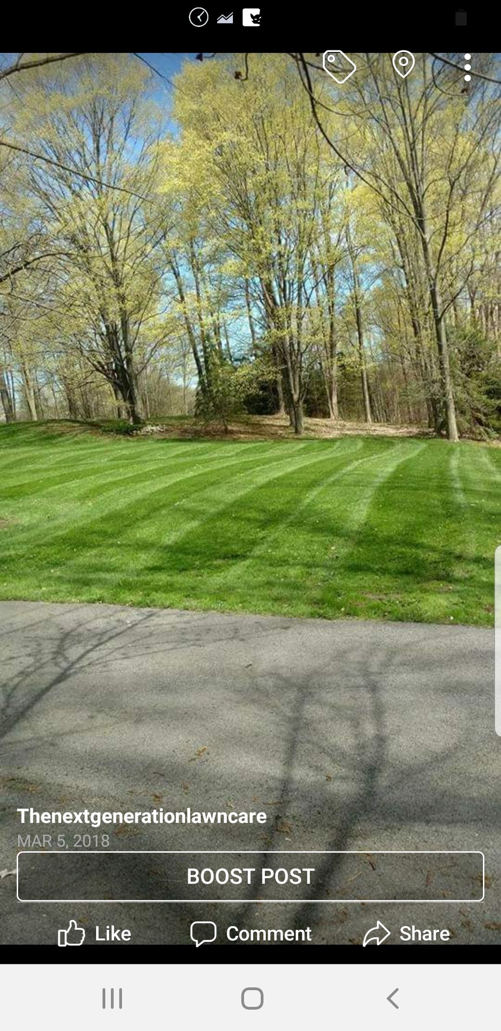 Mowing and trimming
