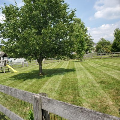 Avatar for Staying Green Lawncare and Snow Removal Fairfield, OH Thumbtack