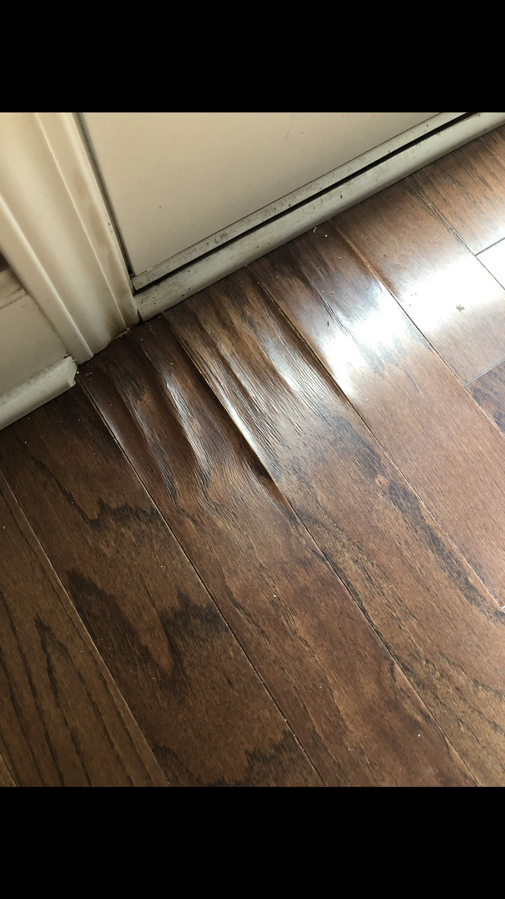 Hardwood Repair and Replacement