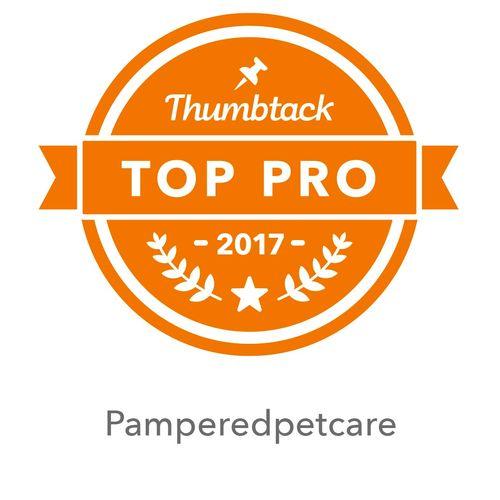 Top Pro 2017, 2018