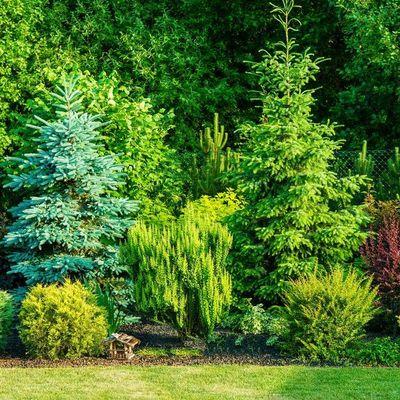 Avatar for Greenscape Lawn care