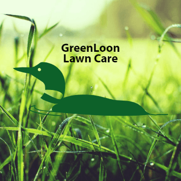 Avatar for GreenLoon Lawn Care + Snow Removal Minneapolis, MN Thumbtack