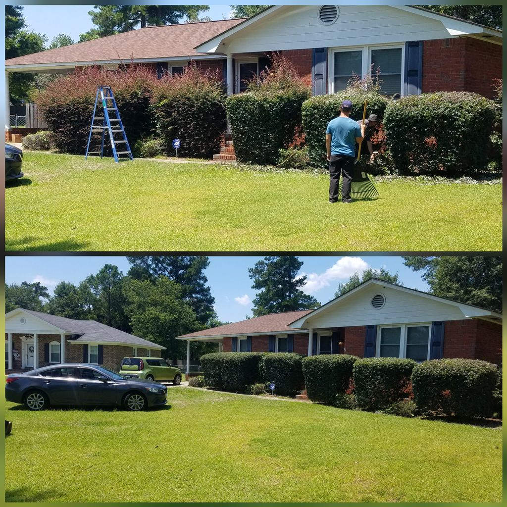 Landscaping - Hedge & Bush Trim
