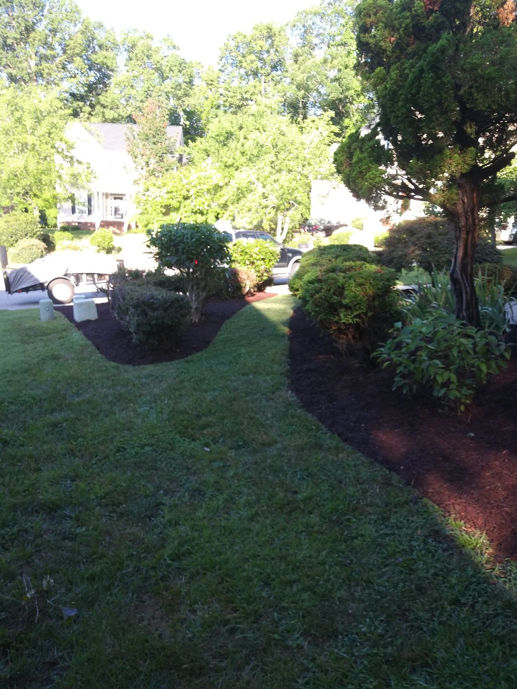 Clean up's w pruning and mulch