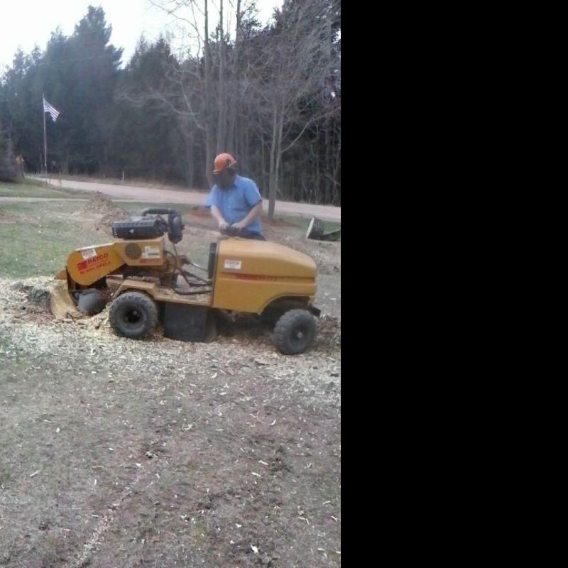 wisconsin stumpgrinding services