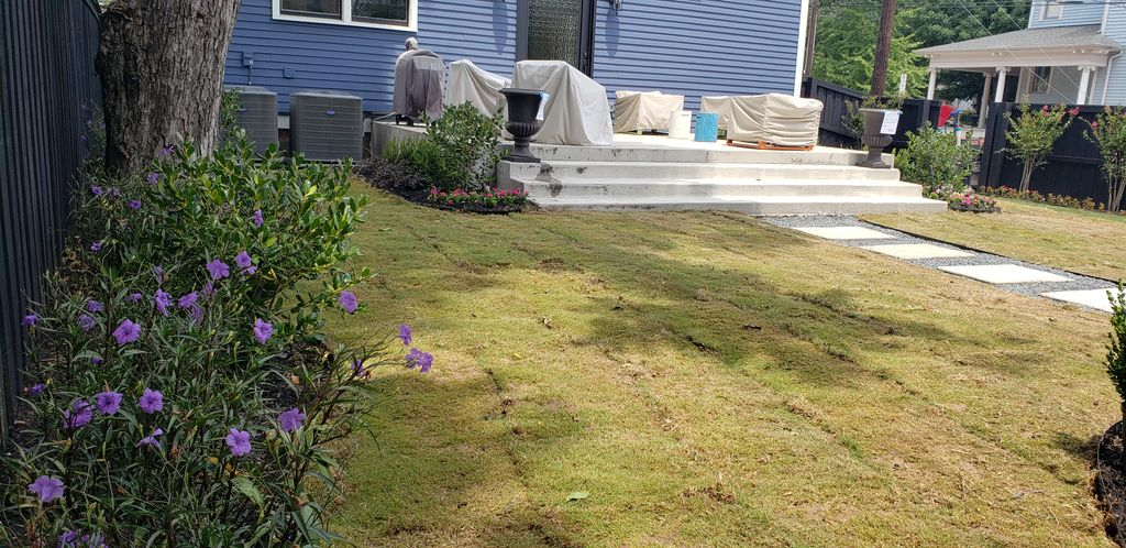 Full Renovation of outdoor landscaping and design