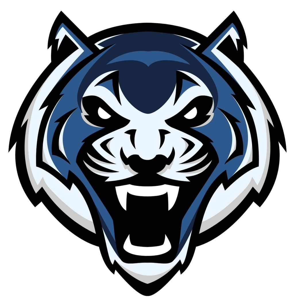 Blue Tigers Pro Mounting Services LLC