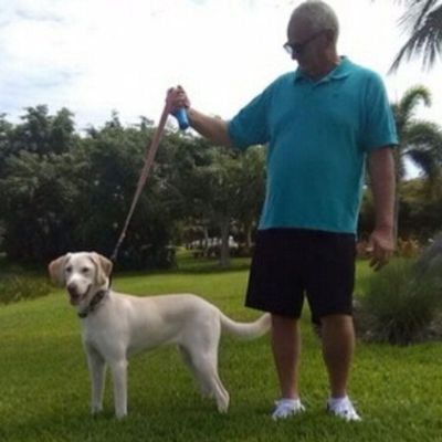 Avatar for Barry's Dogs Cape Coral, FL Thumbtack