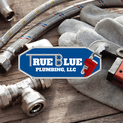 Avatar for True Blue Plumbing