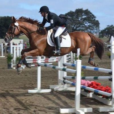 Avatar for Opava Eventing Santa Clarita, CA Thumbtack