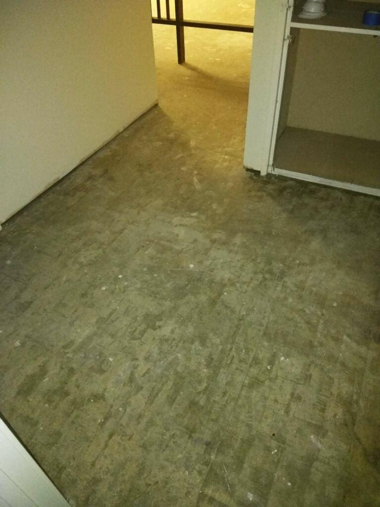 Polish Concrete Floor instead
