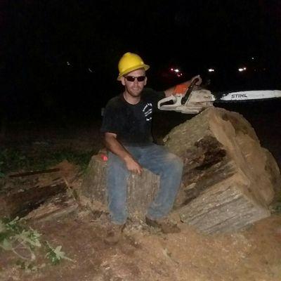 Avatar for Gordon's Tree Service and Ground To Sky Tree Guys