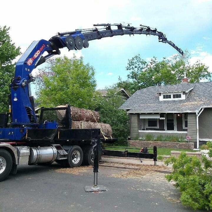 N&D Tree LLC