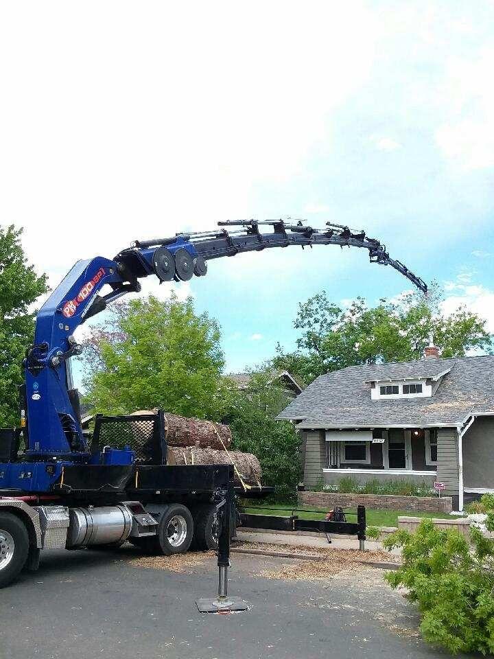 Denver Tree Removal