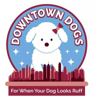 Avatar for Downtown Dogs Philadelphia, PA Thumbtack