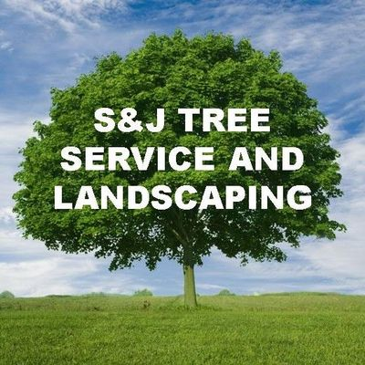 Avatar for SJ Tree Service and Landscaping Inc. Randolph, MA Thumbtack
