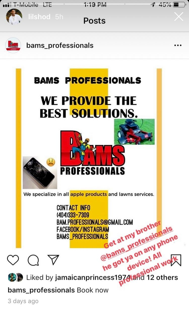 Bams_professionals